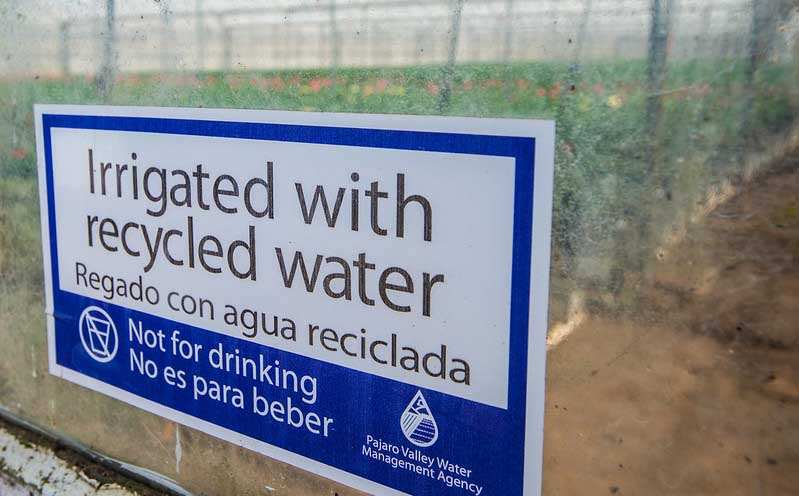 Recycled water sign - Hydroponic vs Soil Growing